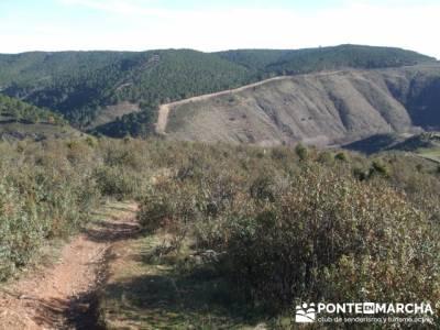 Hacia el Poblado del Atazar- Senda Genaro GR300 - senderismomadrid; viajes puente de mayo; fines de